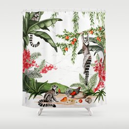 Ring-tailed lemurs of Madagascar .1 Shower Curtain