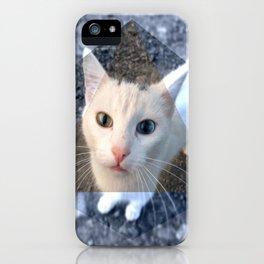 METRIC CAT iPhone Case