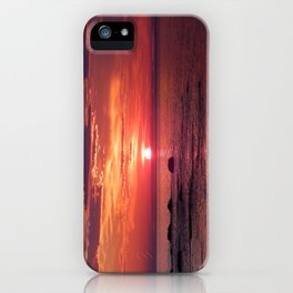 The Flamboyant One iPhone Case
