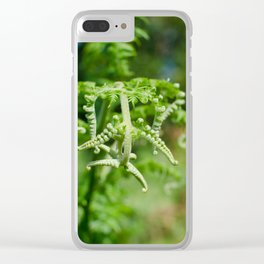 fern in the woods,  Azores Clear iPhone Case