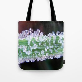 Ice cubes on green grass Tote Bag