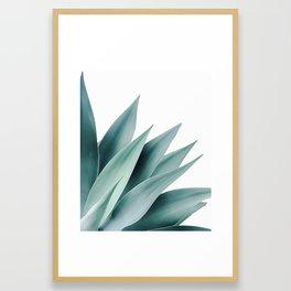 Agave flare II Framed Art Print