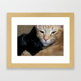 Snuggles Framed Art Print