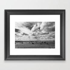 Cows in a field Framed Art Print