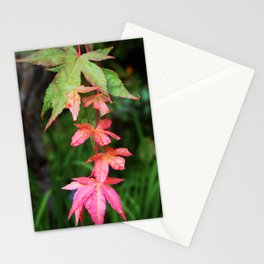 Line of Leaves Stationery Cards