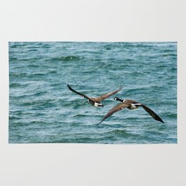 Pair of Canadian Geese Flying Away Rug