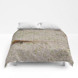 Tiny Dragon Comforters