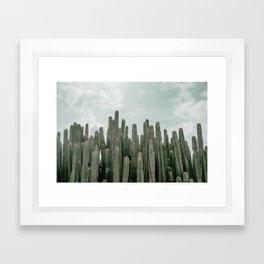 Cactus Jungle Framed Art Print
