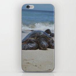 Sea Turtle Life iPhone Skin