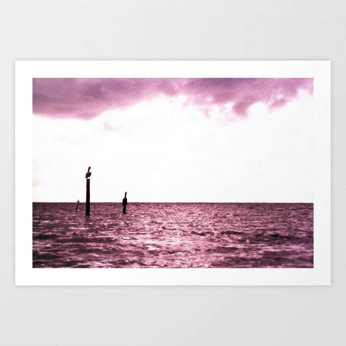 Pink Pelican Art Print