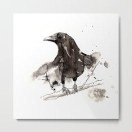 Blackcrow Metal Print