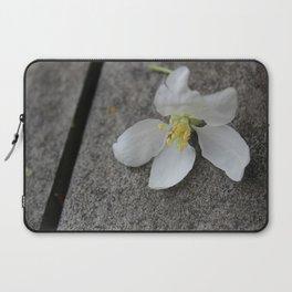 Fallen Apple Tree Blossom Laptop Sleeve