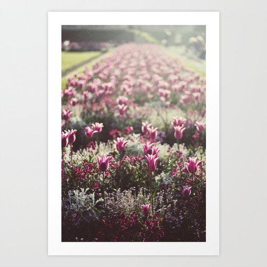 Paris Flowers Art Print