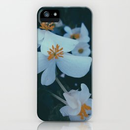 Flowers in the window 01 iPhone Case