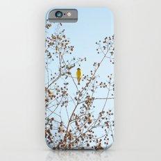 little yellow bird Slim Case iPhone 6s