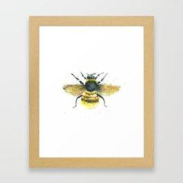 Bumblebee Art - Watercolor Bumblebee Art Framed Art Print