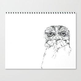 Grumpy Feathers Canvas Print