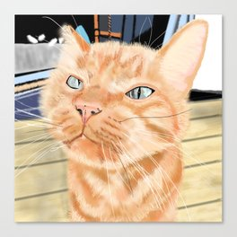 Oliver the Sniffy Red Tabby Cat Canvas Print