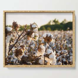 Cotton Field 19 Serving Tray