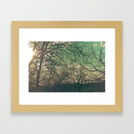 trees & sky. Framed Art Print