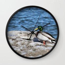 Cynical Wall Clock