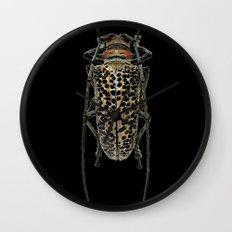 Insecte long avec antennes colors fashion Jacob's Paris Wall Clock