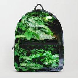 Dreamy Falls Backpack