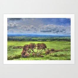Dartmoor National Park Devon Art Print