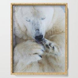 Funny Sleepy Polar bear close-up. Serving Tray