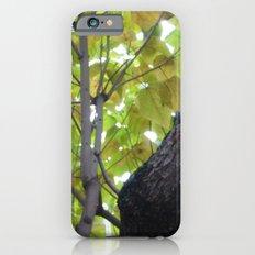 Parapluie Slim Case iPhone 6s