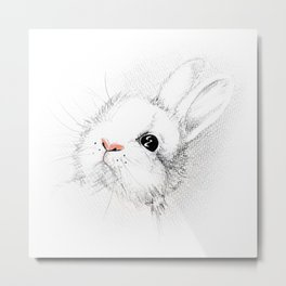 Spring in Summer Bunny Honey - I Metal Print