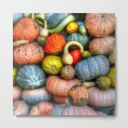 Fall crop Metal Print