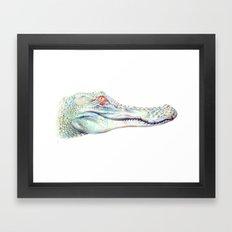 Albino Alligator Framed Art Print