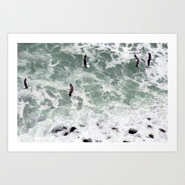 birds over the ocean Art Print