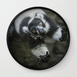 Lemur In The Glass Wall Clock