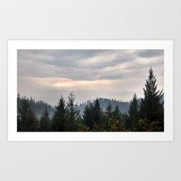 Cloudy Pines Art Print