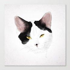 Fibrine Canvas Print