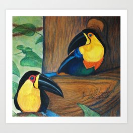 Two Can Toucan Art Print