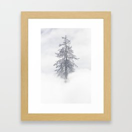 Yellowstone National Park - Ice Covered Tree Framed Art Print