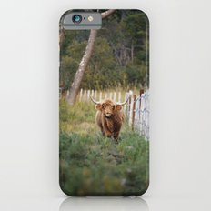 Beast of the Southern Wild II Slim Case iPhone 6s