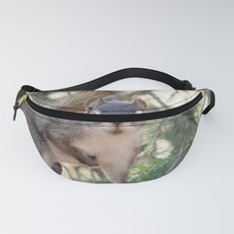And Who Are You? Fanny Pack