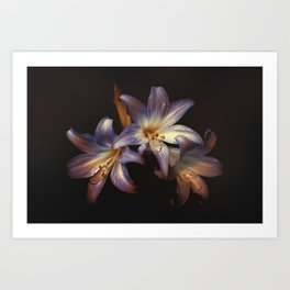 three living natures Art Print