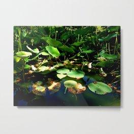 Lotus #1 Metal Print