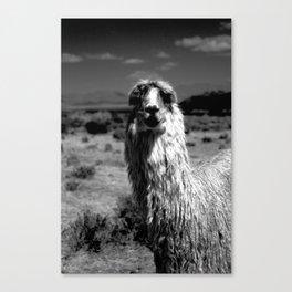 Peru Journey NO2 Canvas Print