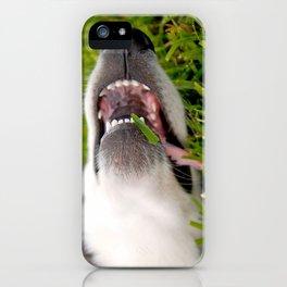 Laugh it off! iPhone Case