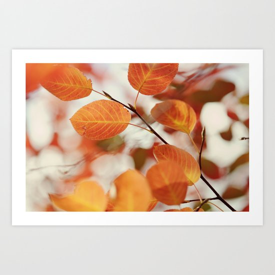 The Color of Autumn Art Print