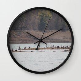 Bird Island Wall Clock