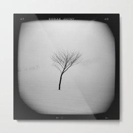 Lonely Tree in Nagano Metal Print