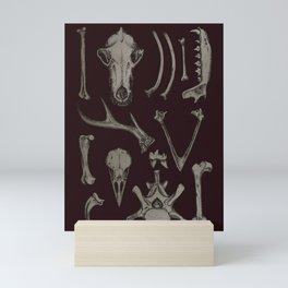 Animal Bones Anatomical Illustration on Dark Red Mini Art Print