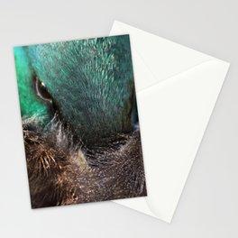 Sleepy mallard duck close-up 1 Stationery Cards
